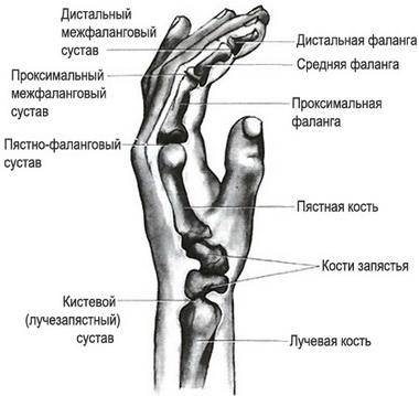 Интрамедуллярный остеосинтез титановыми стержнями