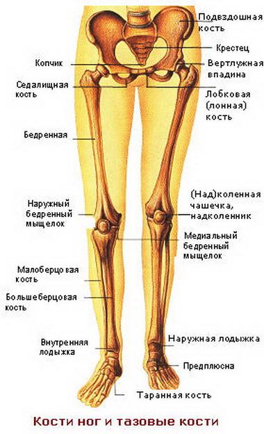 Очень сильно болит косточка на ноге