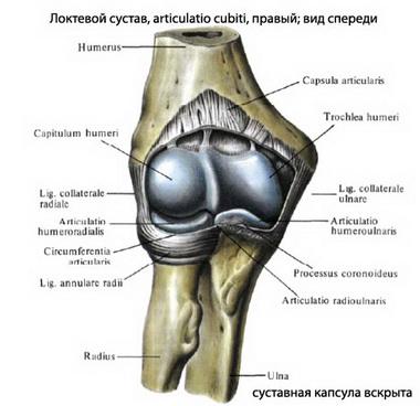 Артроскопия локтевого сустава