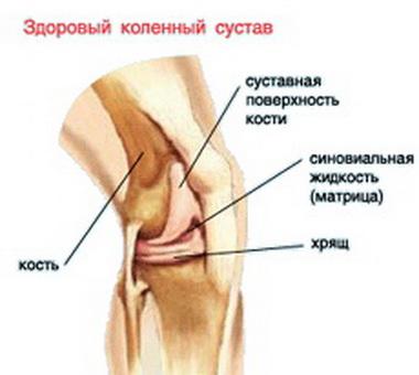 Эндопротезирование тазобедренного сустава противопоказания мазь вишневского при воспалении суставов